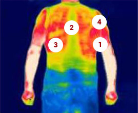 Winter back heat map.